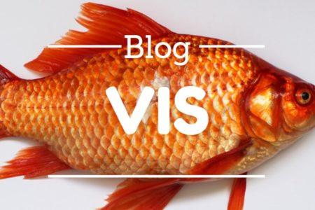 blog vis - dietist deurne - evi sleegers