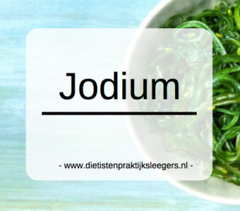 Jodium mineralen Evi Sleegers Deurne