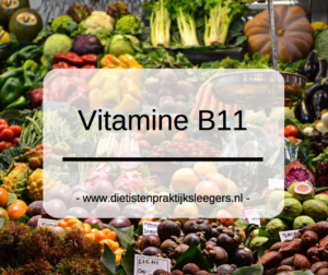 Vitamine B11 Evi Sleegers Deurne