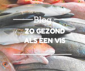 Blog vis Dietist Deurne Evi Sleegers